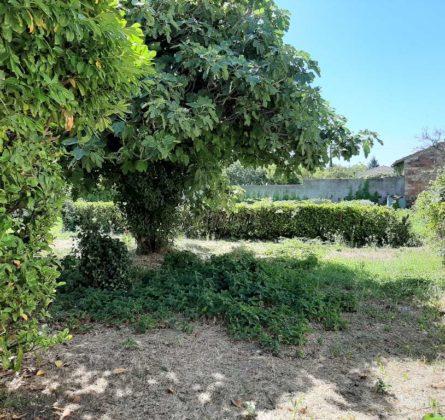 terrain a batir sur ISTRES - constrcuteur de maison - Villas la Provençale