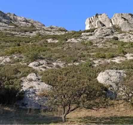 TERRAIN A BATIR MAILLANNE 13910 - constrcuteur de maison - Villas la Provençale