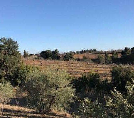 TERRAIN à Bâtir à SAINT GILLES - constrcuteur de maison - Villas la Provençale