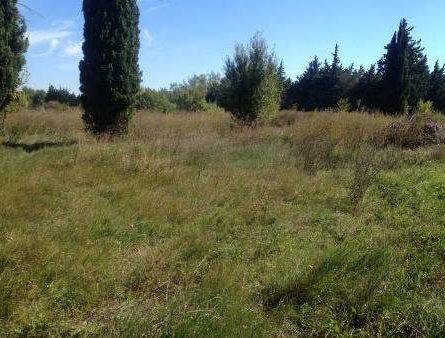 terrain a batir sur FONTVIELLE - constrcuteur de maison - Villas la Provençale