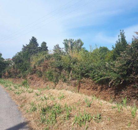terrain a batîr sur NOVES - constrcuteur de maison - Villas la Provençale