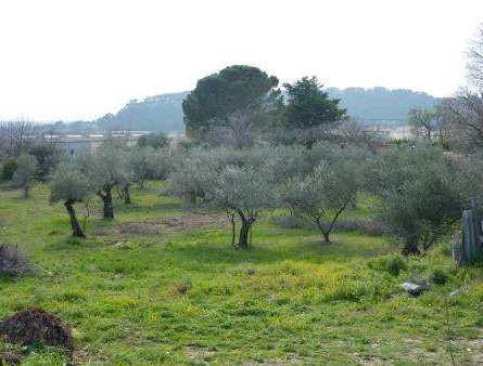 Terrain à Bâtir à BEAUCAIRE - constrcuteur de maison - Villas la Provençale