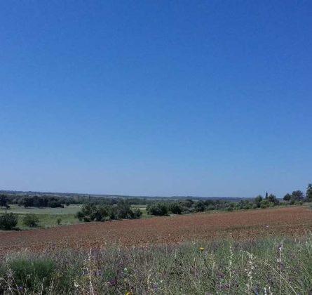 TERRAIN A BATIR ARLES SAMBUC - constrcuteur de maison - Villas la Provençale