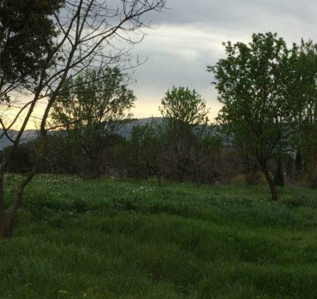 TERRAIN A BATIR MARSEILLE 13011 - constrcuteur de maison - Villas la Provençale