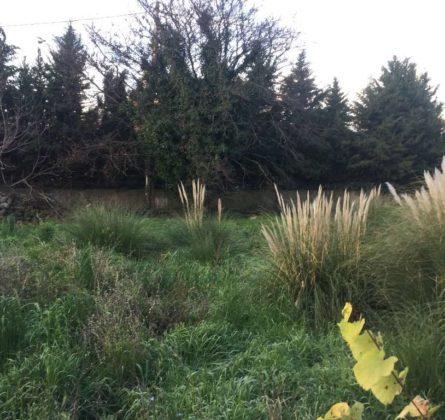 TERRAIN A BATIR NANS LES PINS - constrcuteur de maison - Villas la Provençale