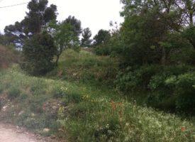 Terrain à Bâtir de 450m² à St Zacharie