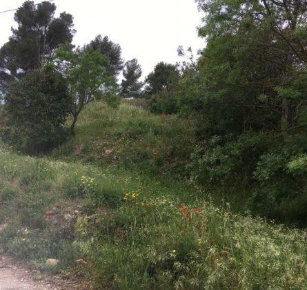 Terrain à Bâtir de 450m² à St Zacharie - constrcuteur de maison - Villas la Provençale