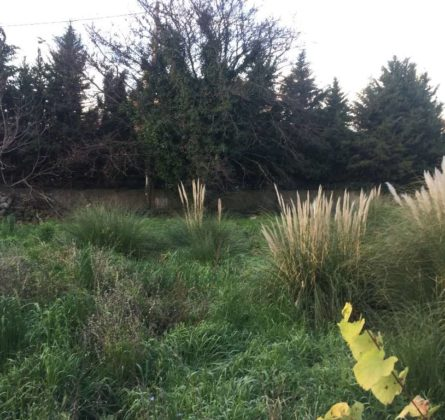 MAISON COMTEMPORAINE à NANS LES PINS - constrcuteur de maison - Villas la Provençale