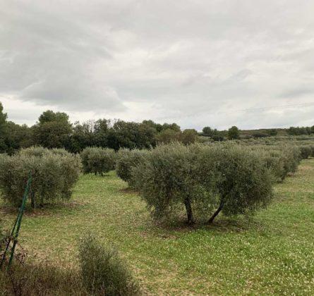 LANCON DE PROVENCE - constrcuteur de maison - Villas la Provençale