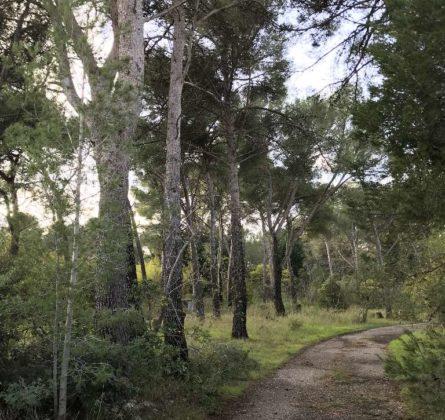 A deux pas de la côte bleue - constrcuteur de maison - Villas la Provençale