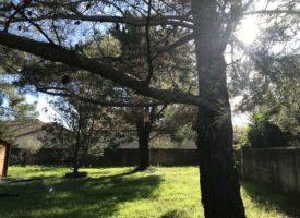 Opportunité à Saint Martin de Crau