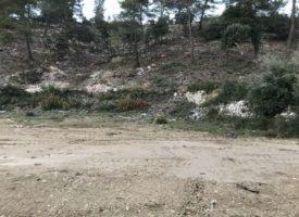 Grand terrain dans un site préservé
