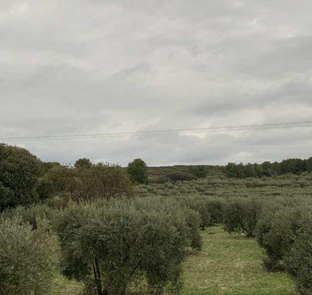 opportunité à Lancon de Provence - constrcuteur de maison - Villas la Provençale