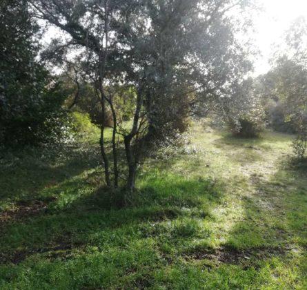 Terrain à bâtir Bédarrides - constrcuteur de maison - Villas la Provençale
