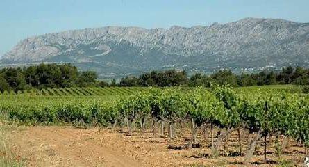 Terrain à bâtir Sorgues - constrcuteur de maison - Villas la Provençale